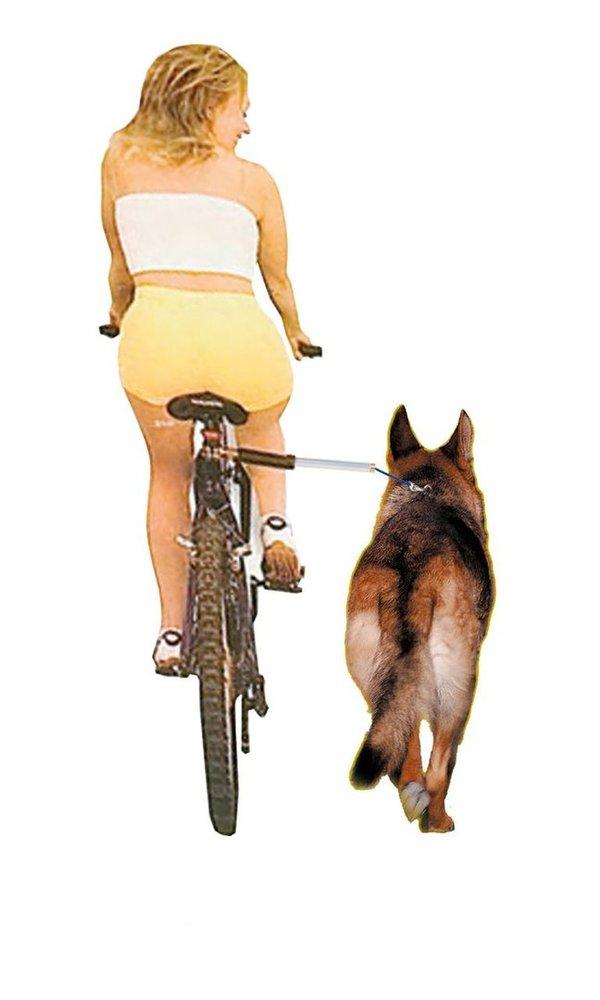 fahrrad freilaufleine walky dog plus sicher mit dem hund. Black Bedroom Furniture Sets. Home Design Ideas